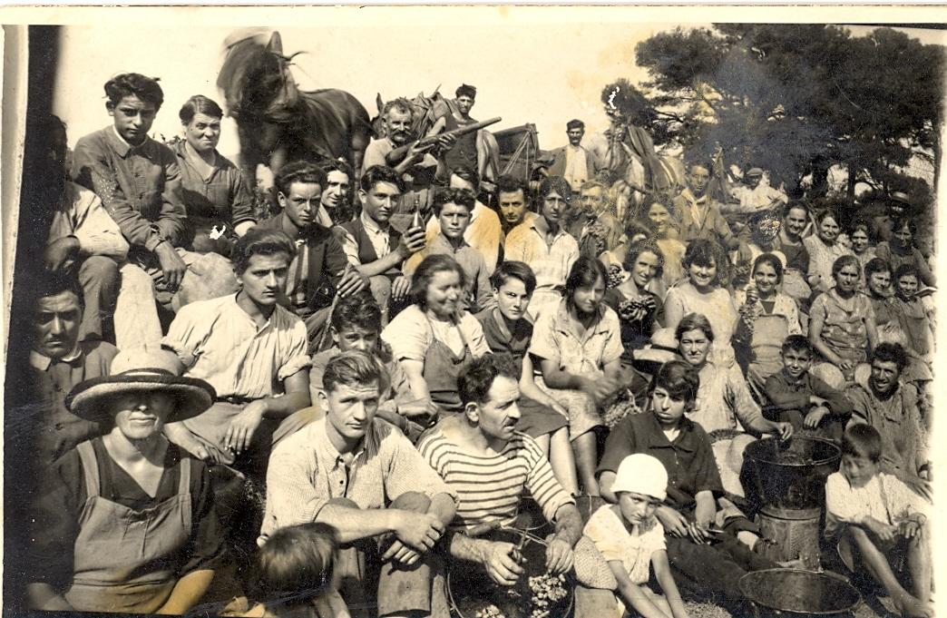 vendanges1928.jpg
